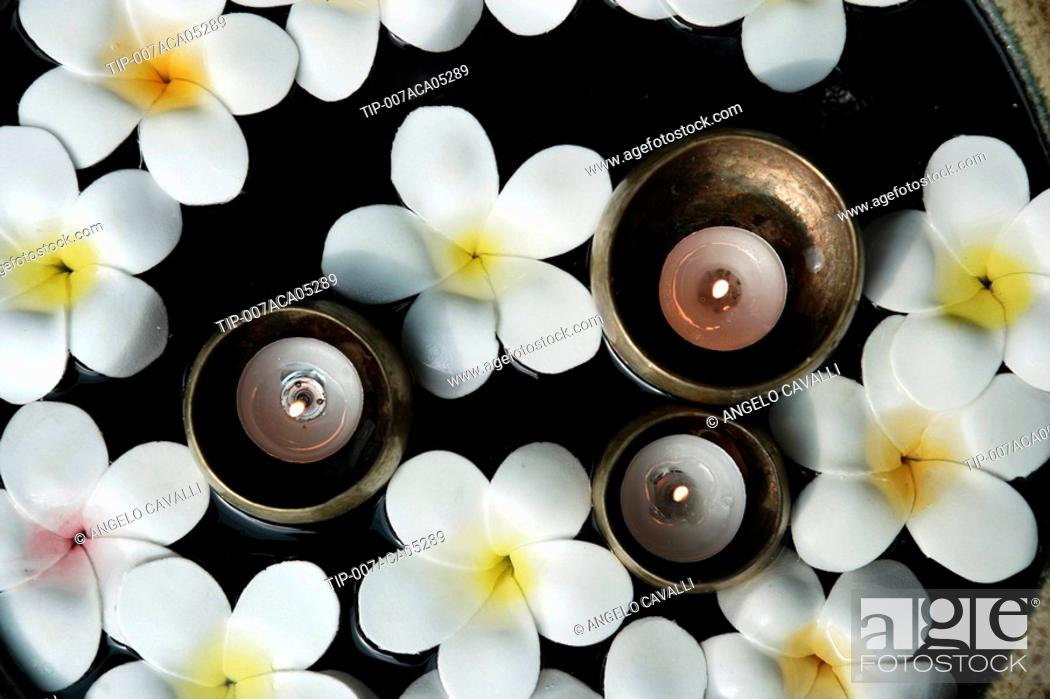 Frangipani paper flowers and candles in a house in thailand stock stock photo frangipani paper flowers and candles in a house in thailand mightylinksfo