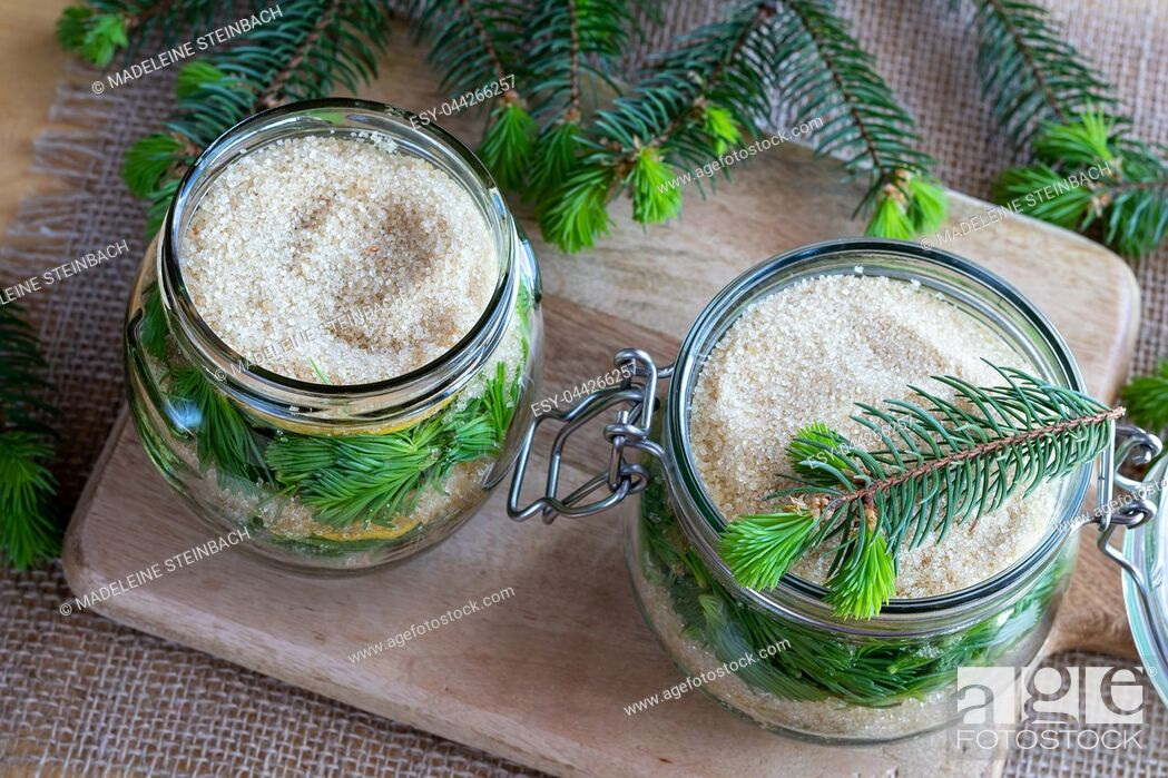 Stock Photo: Two jars filled with young spruce tips, lemon and cane sugar, to prepare homemade syrup against cough.
