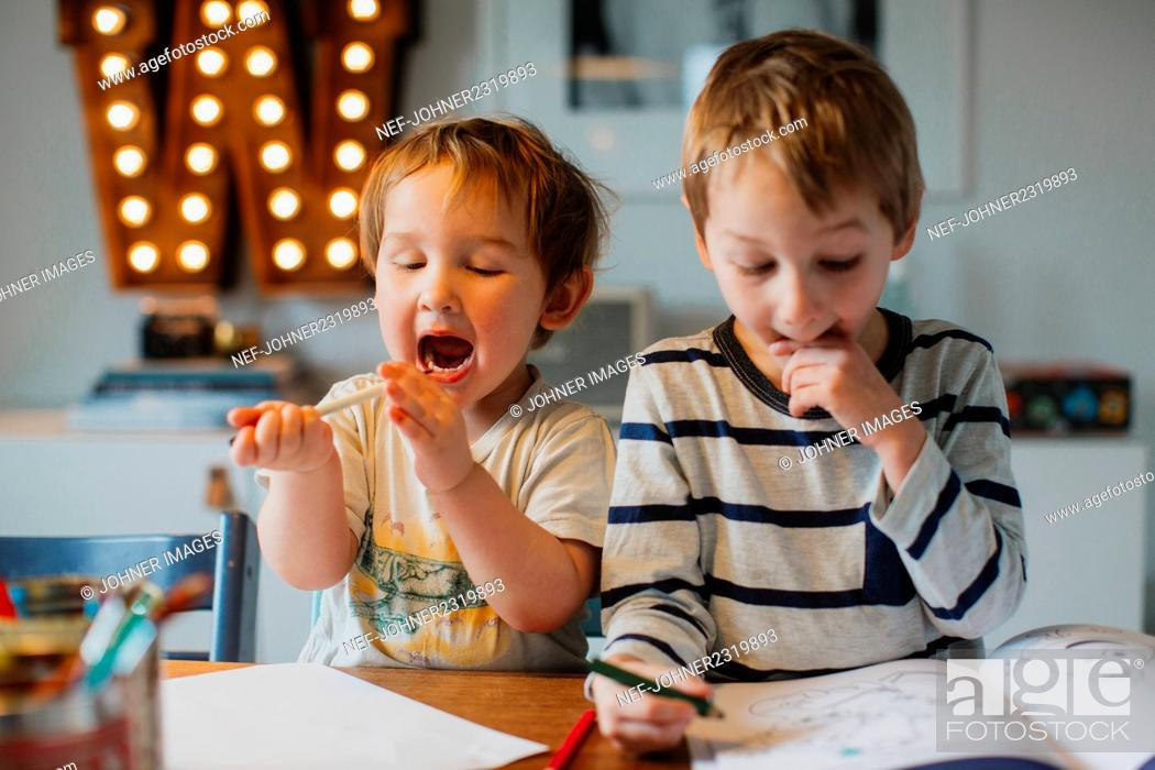 Stock Photo: Brothers doing homework at home.