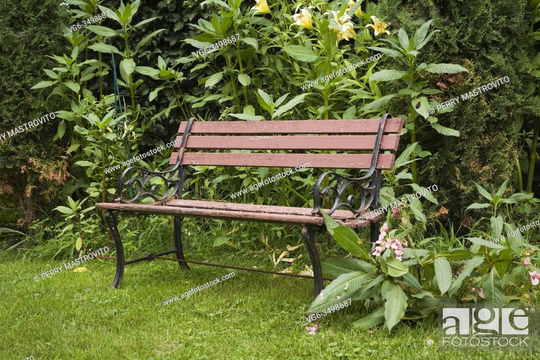 Stock Photo: Brown wood and rusted black cast-iron sitting bench in a landscaped residential backyard garden in summer.