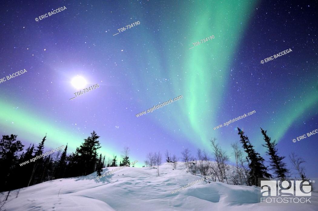 Stock Photo: Northern lights (Aurora borealis). Northwest territories, 30 km. East of Yellowknife city, on the Great Slave Lake (temp: 42ª below zero).