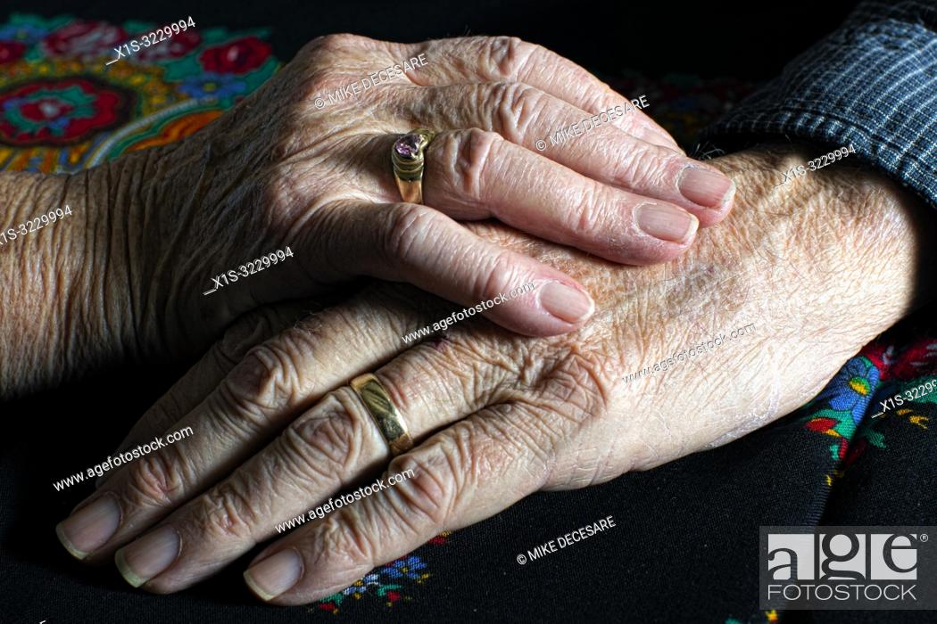 Imagen: An elderly couple in Washington in the United States, finds love and laughter everyday in life and in the art.