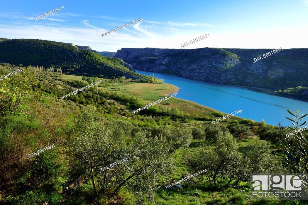 Stock Photo: Olive trees and vegetation along the Krka River, near Roski Slap, Krka National Park, Croatia.