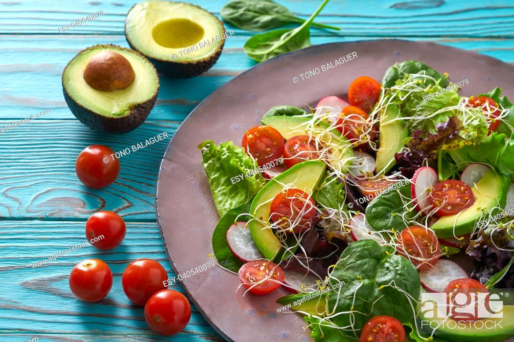 Photo de stock: Avocado salad with sprouts tomatoes spinach and radish healthy food.