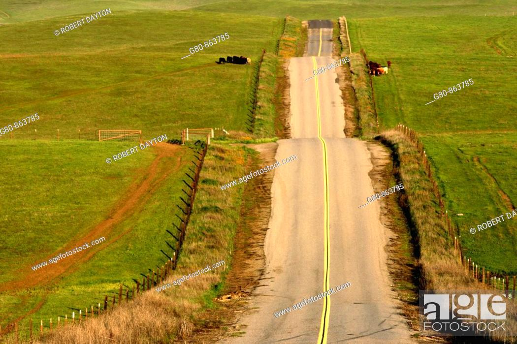 Stock Photo: A roller coaster of a road in the Central Valley of California.