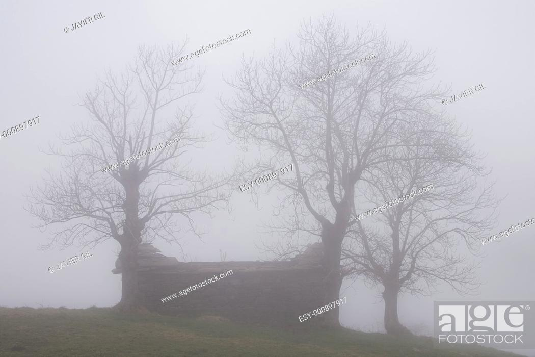 Stock Photo: Fog in the port of El Caracol, Cantabria, Spain.