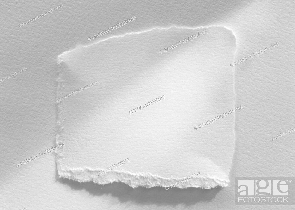 Stock Photo: Piece of white paper with torn edges, close-up, white background.