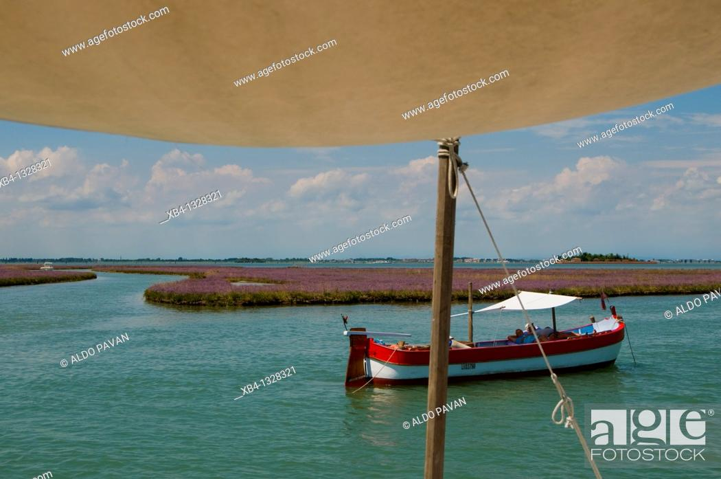 Stock Photo: Italy, Venice, cruising the lagune with Eolo, a traditional Venetian fishing boat called 'bragozzo'.