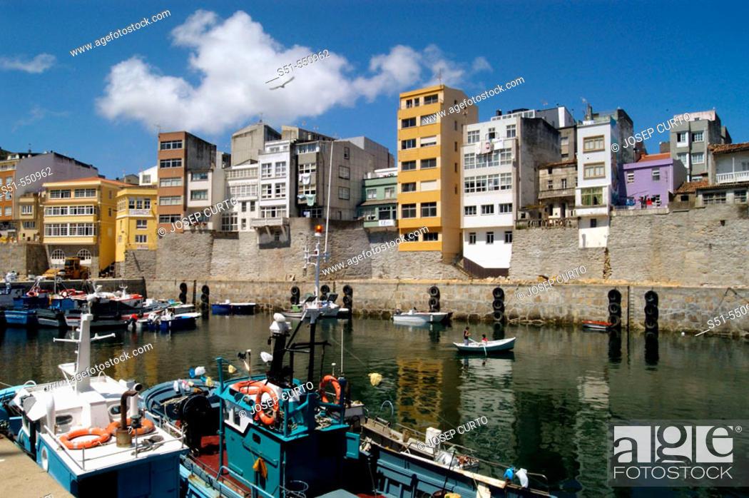 Stock Photo: Harbour. Malpica de Bergantiños. A Coruña. Galicia. Spain.