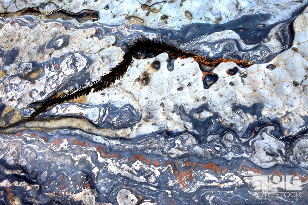 Stock Photo: Eroded Rock, Point Lobos, Big Sur, California, USA.