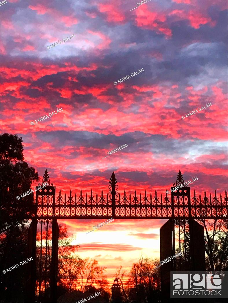 Stock Photo: Sunrise sky. El Retiro park, Madrid, Spain.