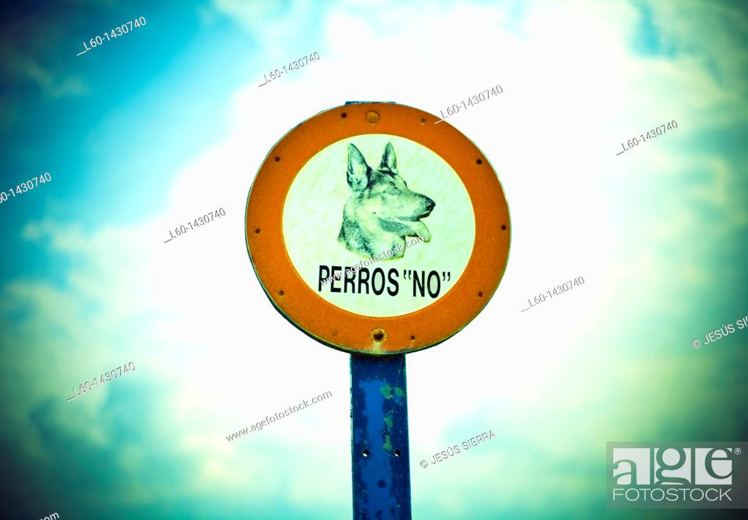 Stock Photo: No dogs sign.