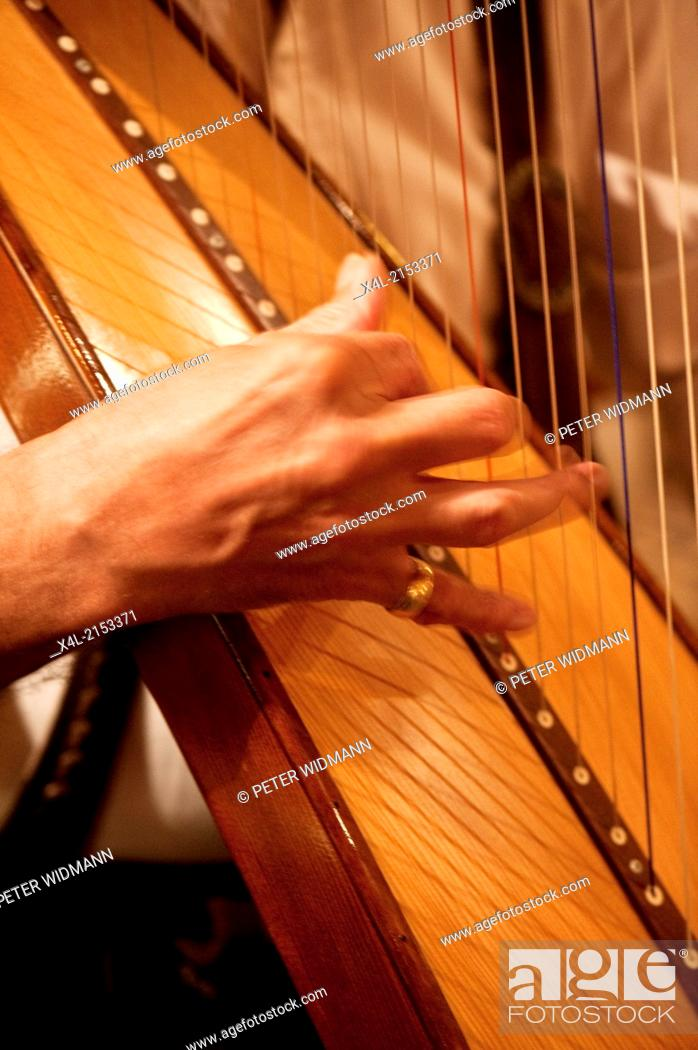 Stock Photo: harp.
