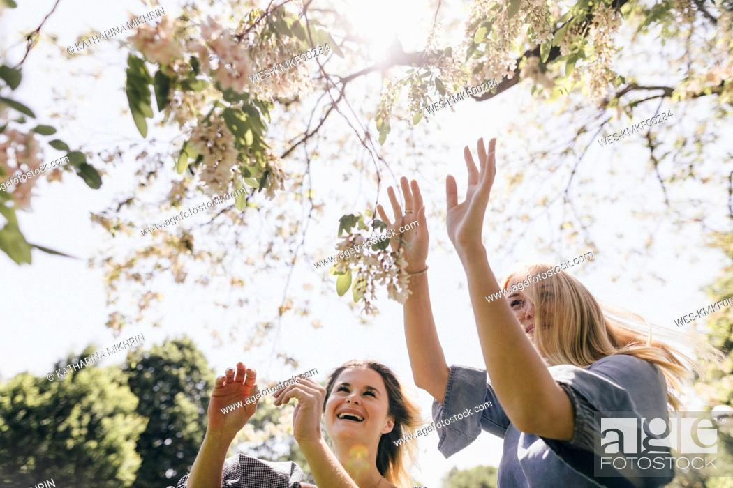 Stock Photo: Two happy young women in a park at blossoming tree.