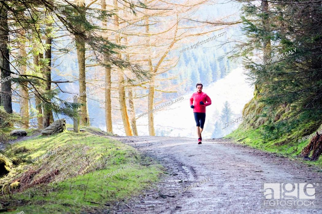 Stock Photo: Man jogging on trail in woods.