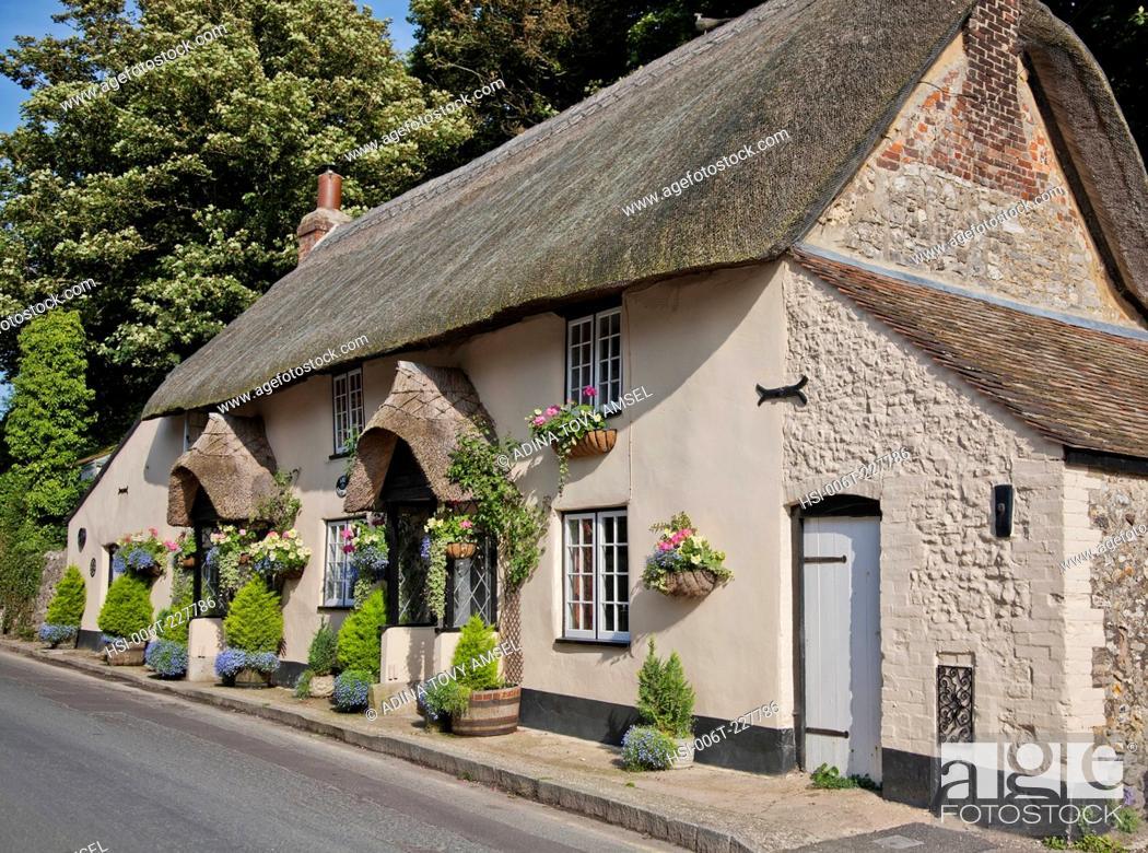 Stock Photo: United Kingdom. England. Dorset. Bournemouth. Thatched cottage.