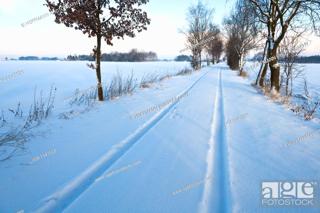 Stock Photo: Car tracks in the snow, Lower Saxony, Germany, Europe.