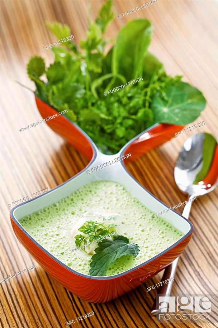 Stock Photo: Herb soup with nettles, watercress, chervil, sorrel and chickweed.