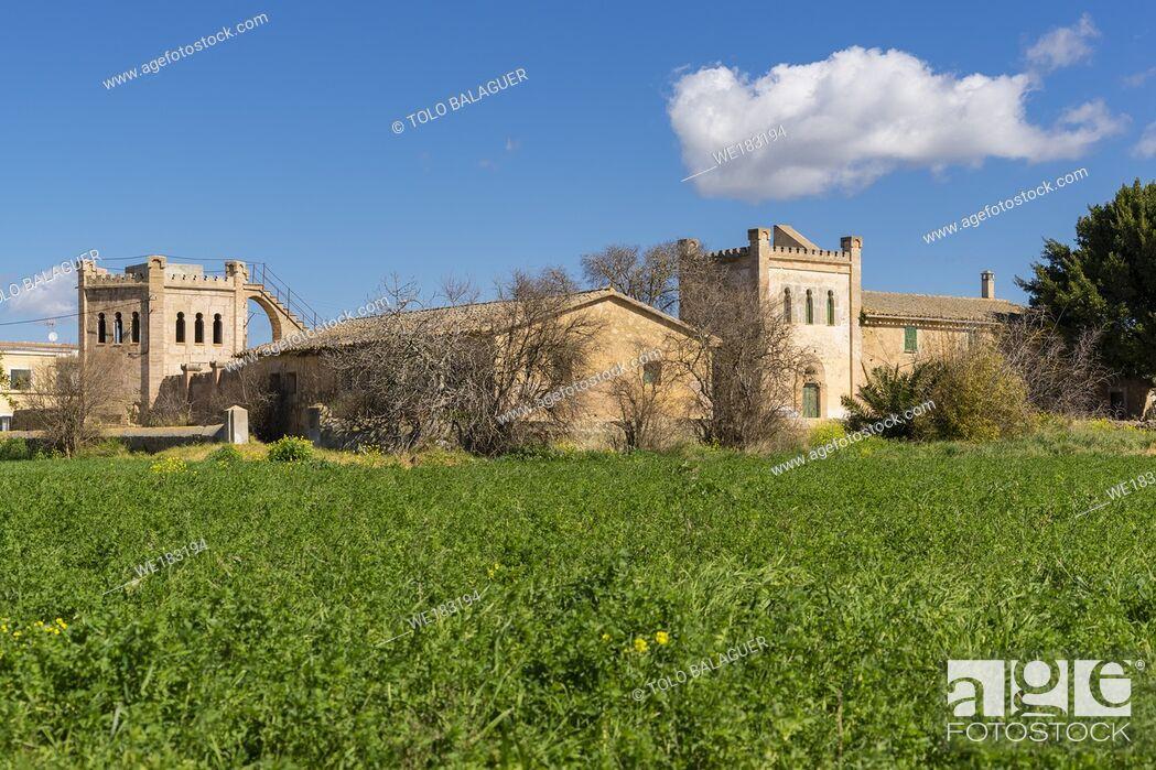 Imagen: Mirabó, Sa Casa Blanca, Palma, Mallorca, balearic islands, Spain.