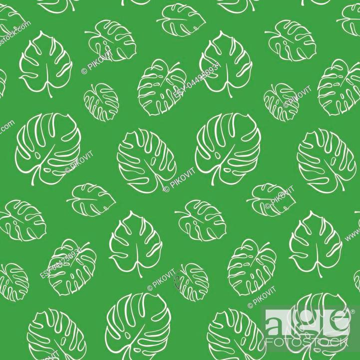 Vector Botanical Illustration Of Monstera Leaf Isolated Outline Drawing Stock Vector Vector And Low Budget Royalty Free Image Pic Esy 044250931 Agefotostock A comic by alyssa stehle. https www agefotostock com age en stock images low budget royalty free esy 044250931