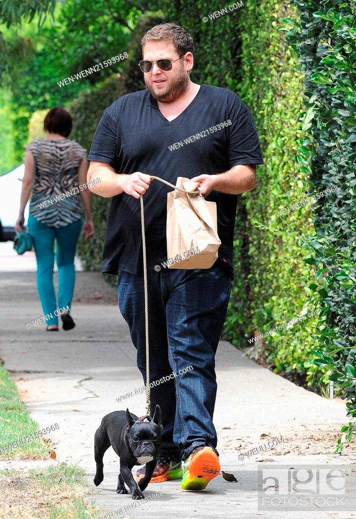 Jonah His Hill Featuring Walks Carmela French Bulldog CxBdWoQer