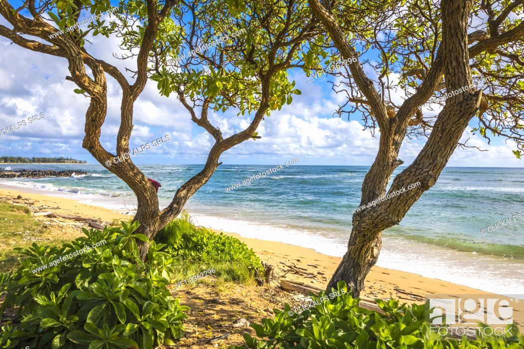 Stock Photo: Sunrise in Kapaa beach park, Kauai island, Hawaii, USA.