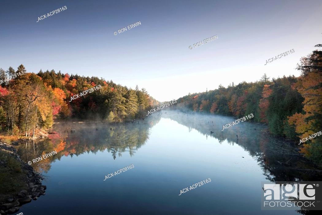 Stock Photo: Brilliant Autumn colours at Smoke Creek in Algonquin Provincial Park, Ontario, Canada.