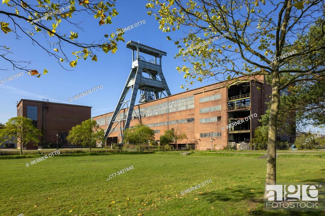 Imagen: Herten, D-Herten, Ruhr area, Westphalia, North Rhine-Westphalia, NRW, hard coal mining, coal-pit Ewald 1/2/7, powerhouse, shaft 7, pit tower, magazine, depot.