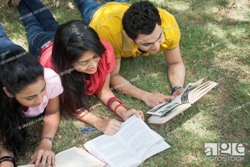 Imagen: Friends studying in a park, Lodi Gardens, New Delhi, Delhi, India.