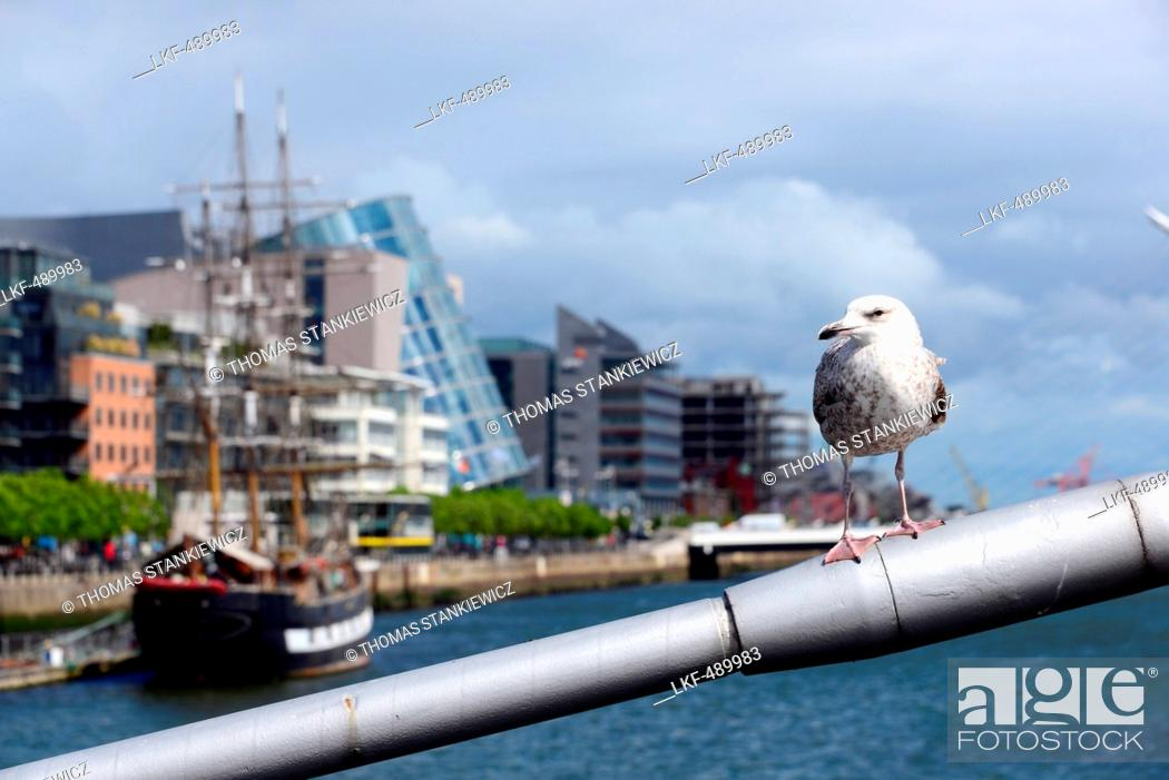 Stock Photo: view over the Liffey River, Convention Centre Dublin, CCD, Docklands, Dublin, Ireland.