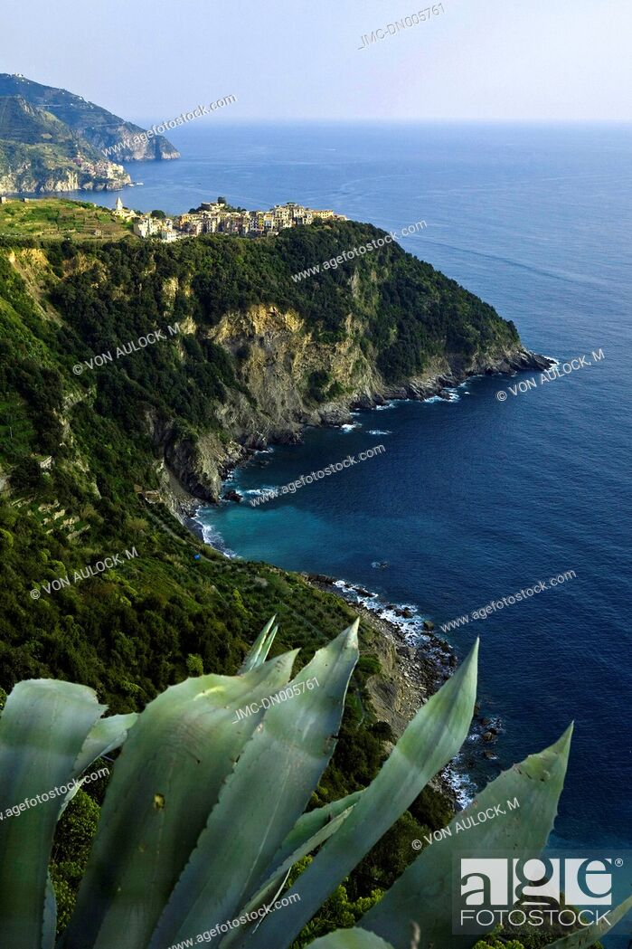 Stock Photo: Italy, Liguria, Corniglia.