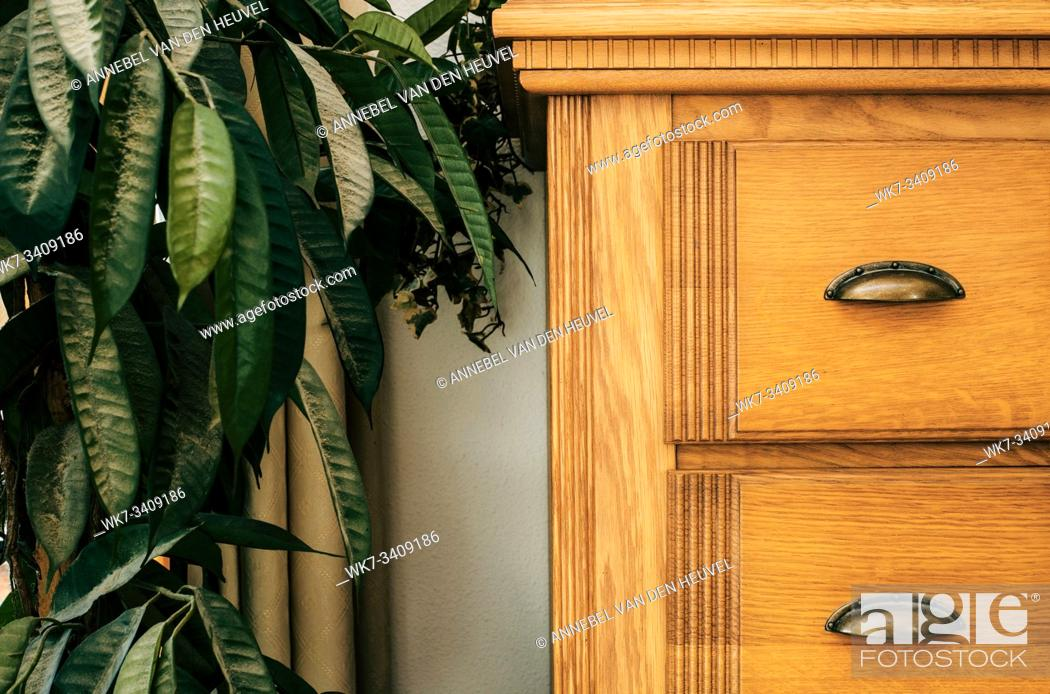 Stock Photo: Brown closet with green house plant close-up background texture home interior texture.