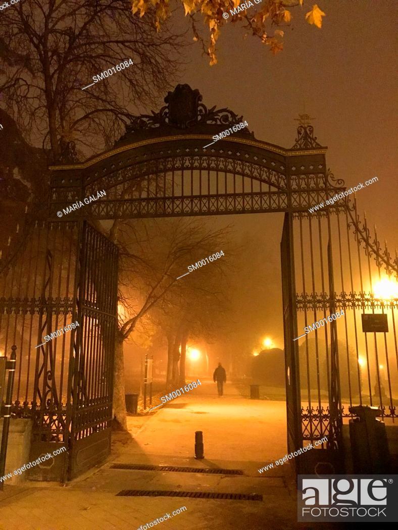 Stock Photo: The Retiro park in the mist, night view. Madrid, Spain.