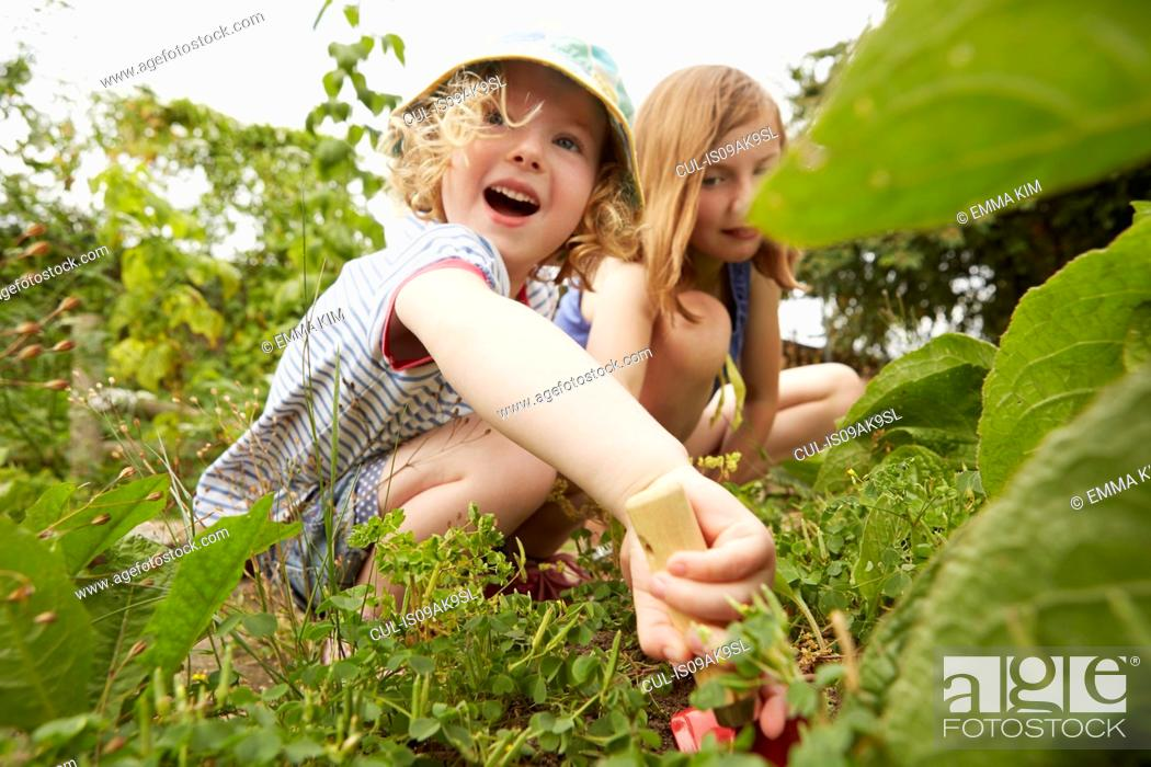 Stock Photo: Two sisters crouching and digging in garden.