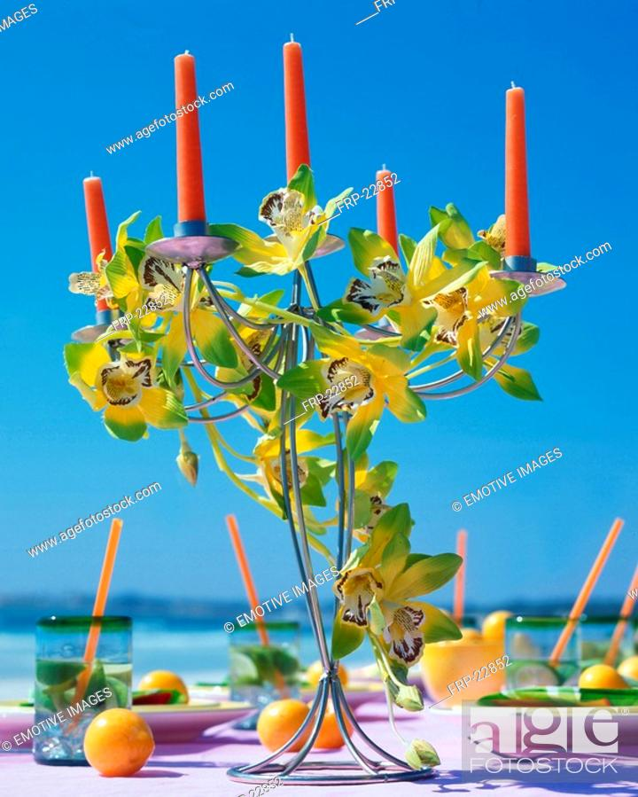 Stock Photo: Candles and cymbidium blossom on a summery table.
