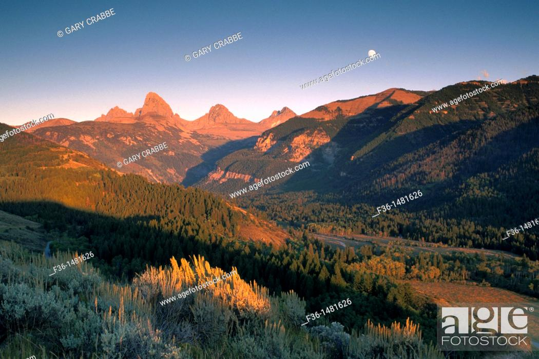 Stock Photo: Moonrise at sunset over the Grand Tetons, from Targhee NF, on the west slope of the Teton Range, WYOMING.
