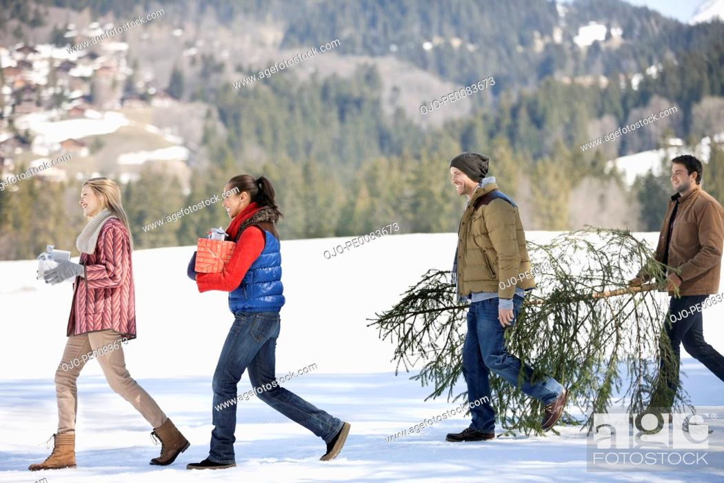 Stock Photo: Couples and dog carrying fresh cut Christmas tree and gifts in snow.