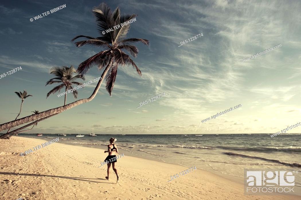 Stock Photo: Dominican Republic, Punta Cana Region, Bavaro, Bavaro beach, palm.