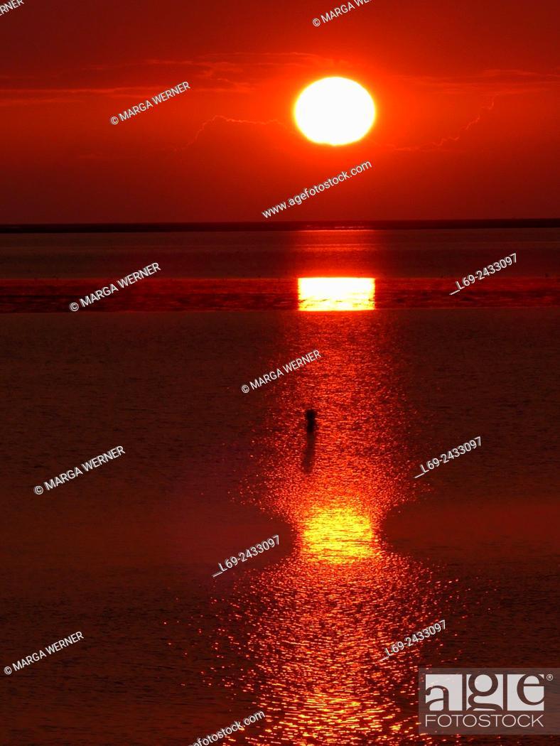 Imagen: Sunset over Wadden Sea at Elbe estuary, Island Neuwerk, Hamburg, Germany.