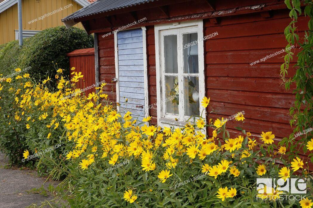 Stock Photo: Old house, Mörbylånga, Öland, Sweden.