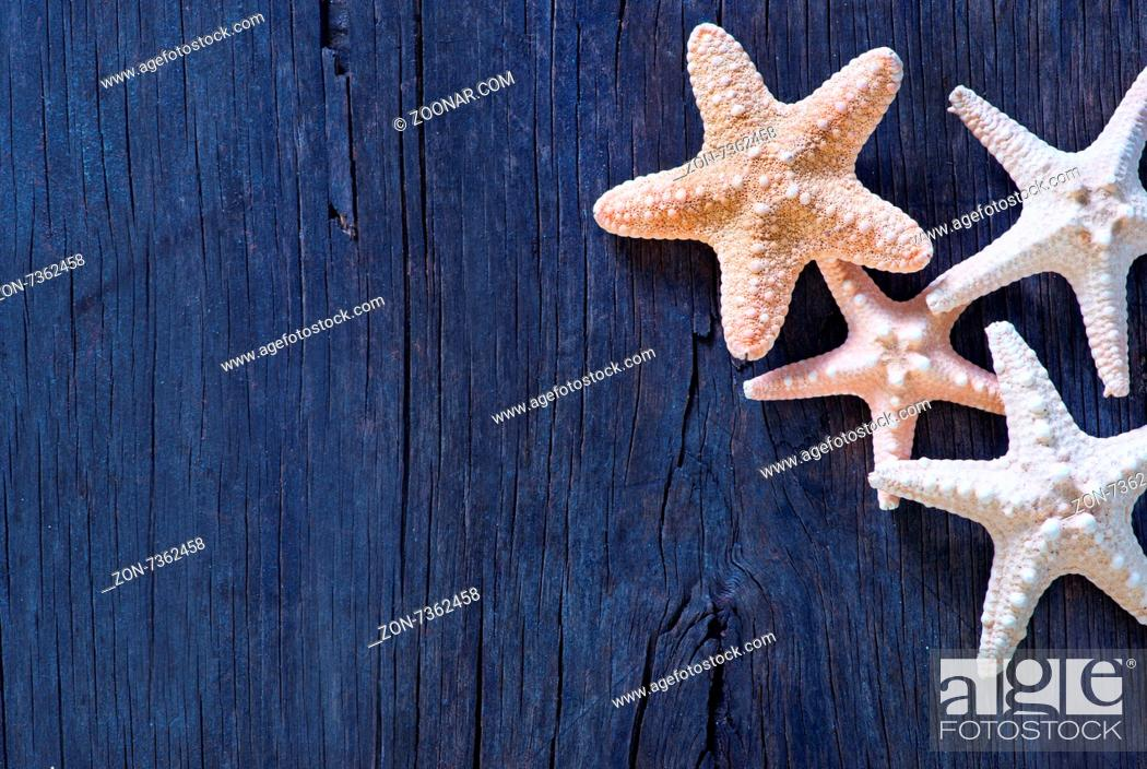 Imagen: starfish on wooden background, sea shell on a table.