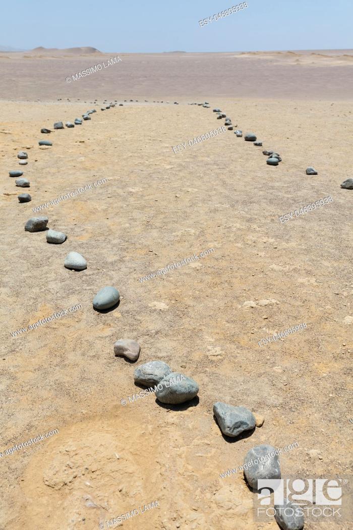 Imagen: National reserve of Paracas, near Lima Peru.