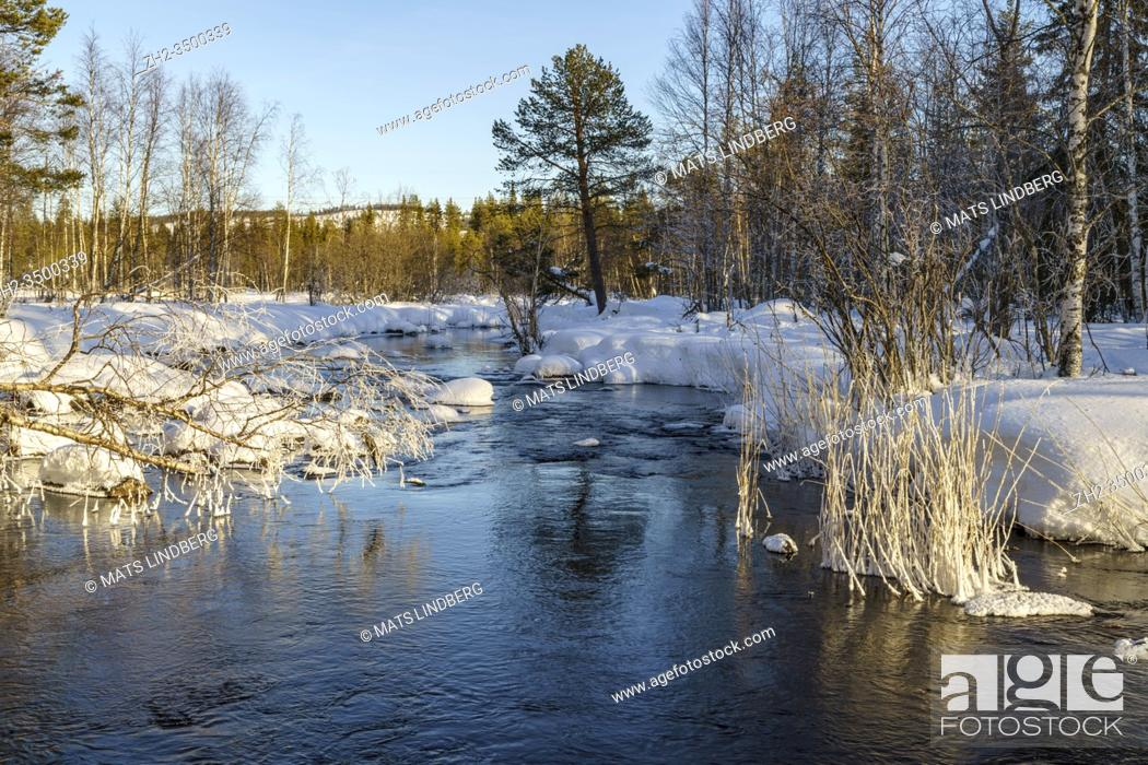 Stock Photo: Winter landscape, creek with open water, plenty of snow in the forest, clear blue sky, Boden county, Norrbotten, Sweden.