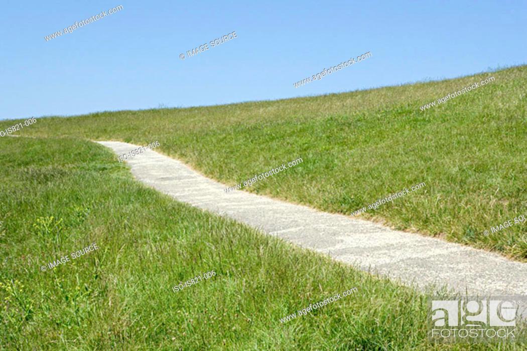 Stock Photo: Path through a field.