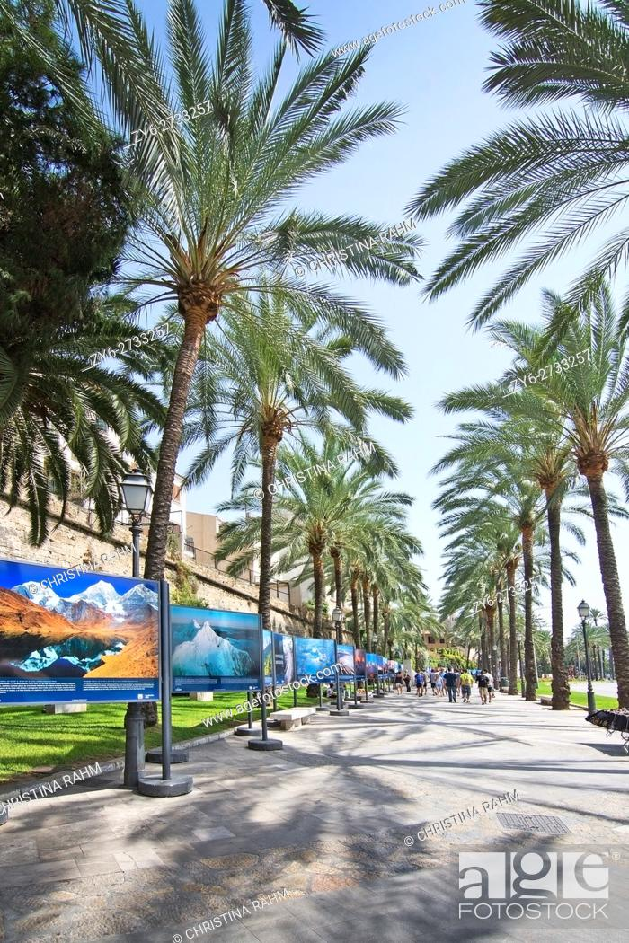 Stock Photo: Mountain photo exhibition on the Paseo Maritimo city streets on a sunny summer day in August 2016 in Palma de Mallorca, Spain.