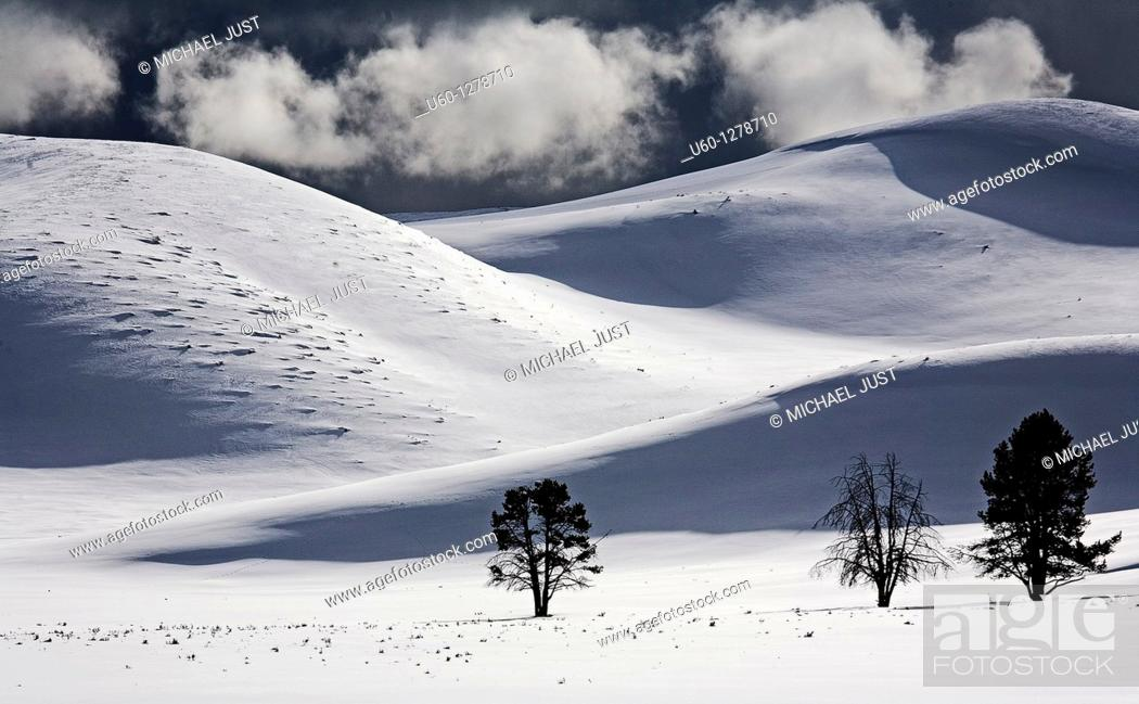 Stock Photo: Winter storm clouds enter Hayden Valley at Yellowstone National Park, Wyoming.