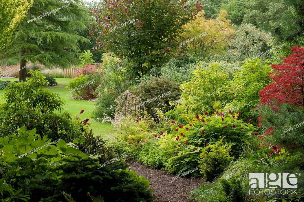 JOHNS GARDEN AT ASHWOOD NURSERIES, Stock Photo, Picture And Rights ...