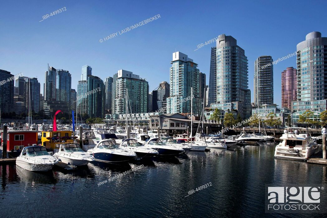 Photo de stock: Vancouver Coal Harbor, marina and skyline, Vancouver, British Columbia Province, Canada.