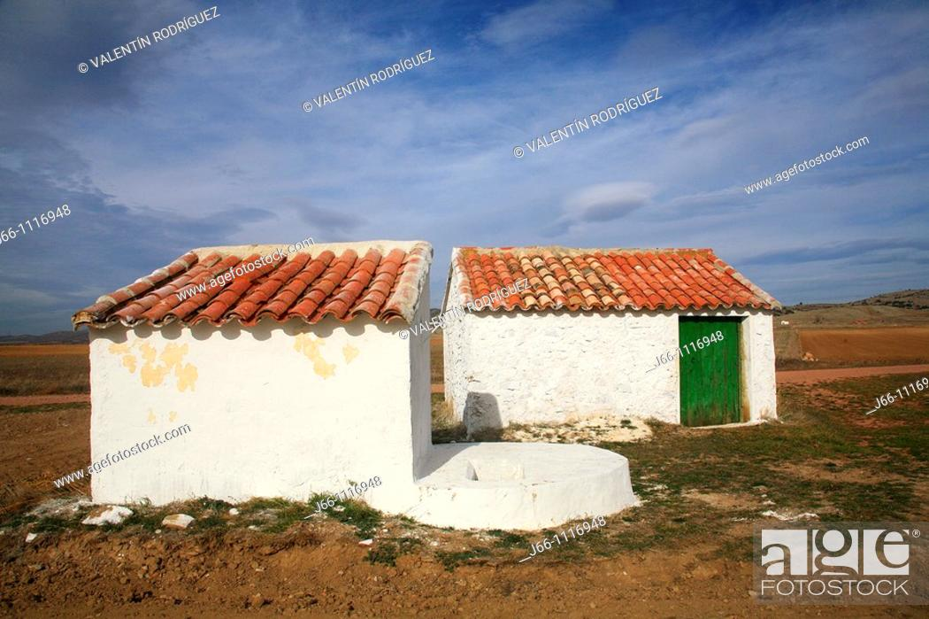 Stock Photo: Gallocanta Wildlife Refuge, Zaragoza province, Aragon, Spain.