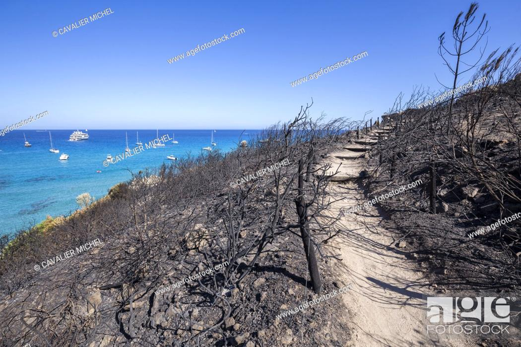 Imagen: France, Var, Ramatuelle, path of the coast on black hills of the Escalet destroyed by flames after the fire of July 25th, 2017.